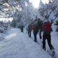 Tournée avec passage des skis autour de Nocito (Sierra de Guara).